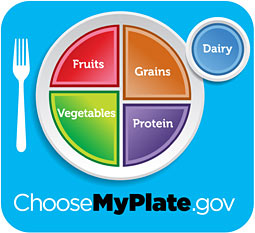 my plate government